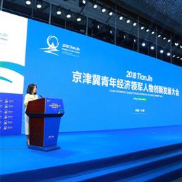 京津冀青年經濟大會品牌設計
