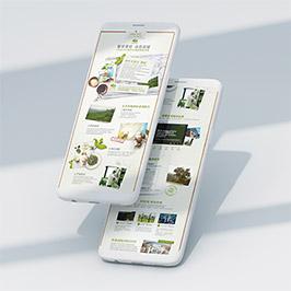悅木之源電商網頁設計