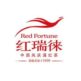 云南白药红瑞徕品牌定位