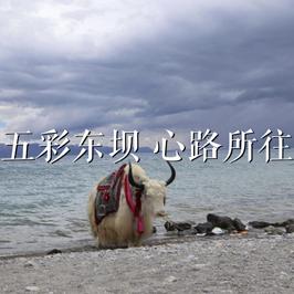 昌都左贡县东坝乡旅游策略