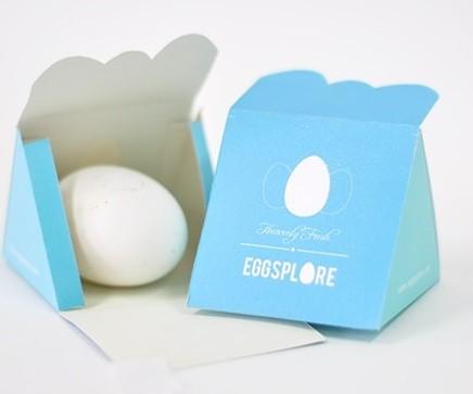 国外鸡蛋礼盒设计作品参考