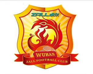 武汉卓尔足球队logo设计理念