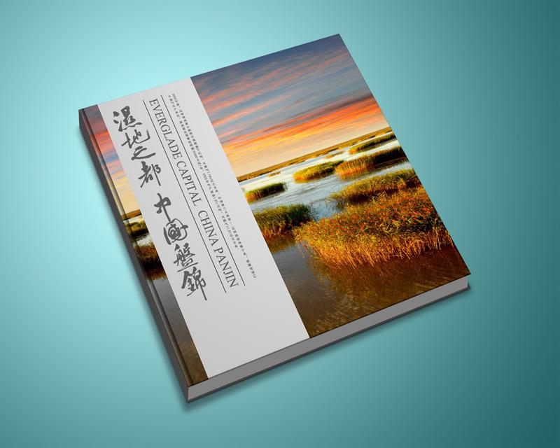 廣州設計公司做網站設計一般要多少錢